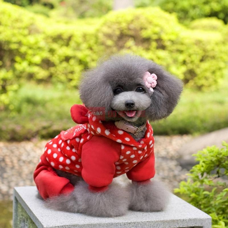 beow 秋冬季四脚宠物狗狗衣服 泰迪比熊等四腿服装 可爱大红心(红色