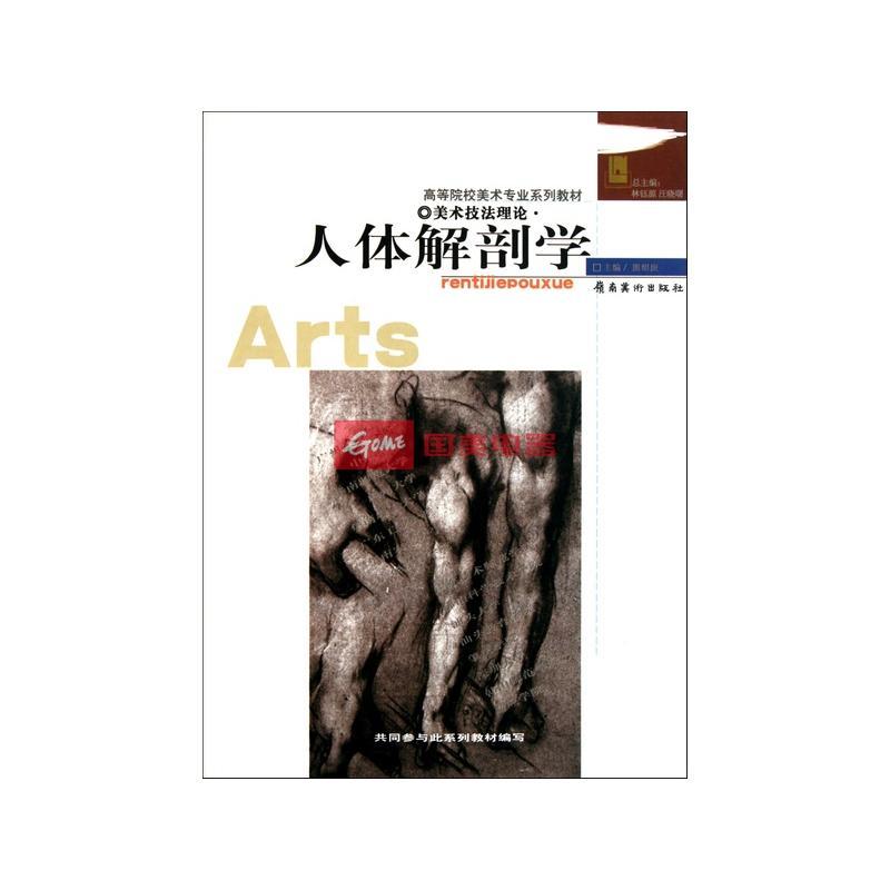 人体解剖学(美术技法理论)/高等院校美术专业系列教材图片