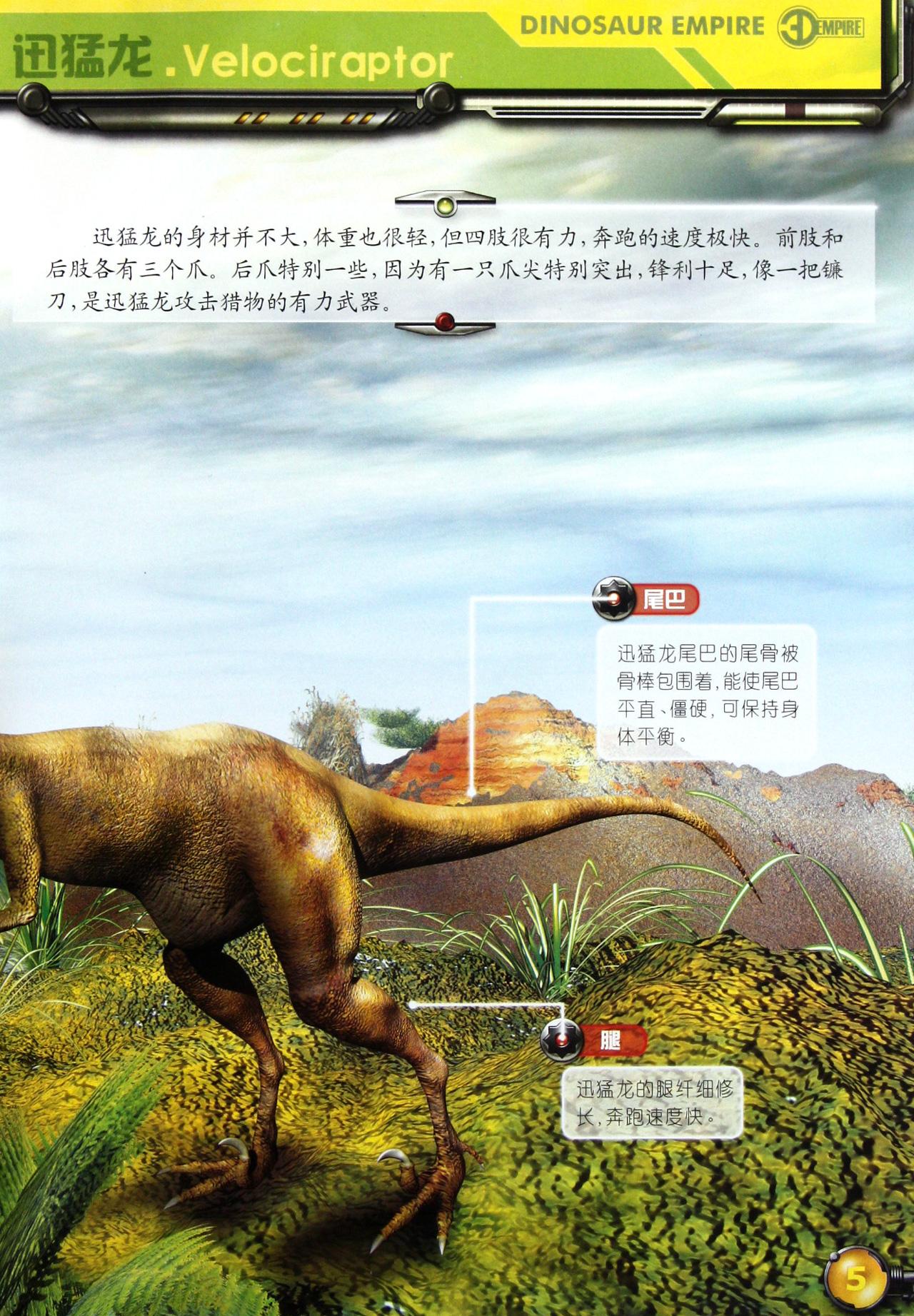 尖状顶的恐龙   剑角龙奇特的角   剑角龙争夺配偶 啮齿龙   多彩的图片